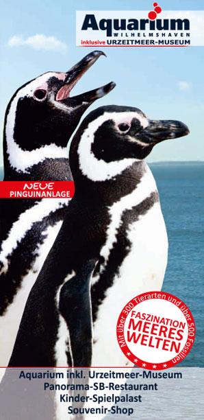 Flyer Aquarium